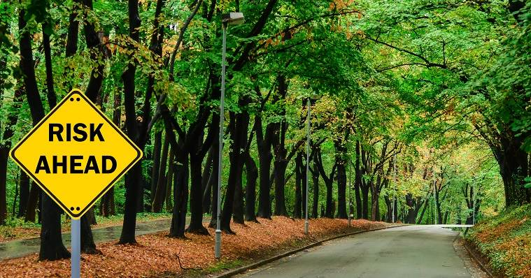 Risk ahead sign amidst road lined with trees